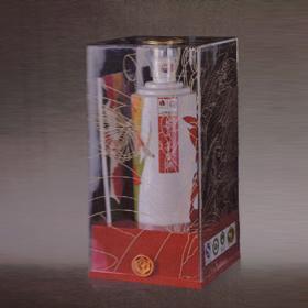 2011年西安花博会纪念茅台酒(典藏版)