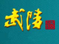 湖南武陵酒有限公司
