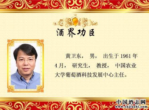 黄卫东_领军功臣
