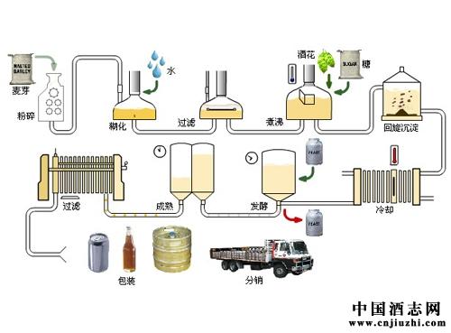 啤酒之生产过程