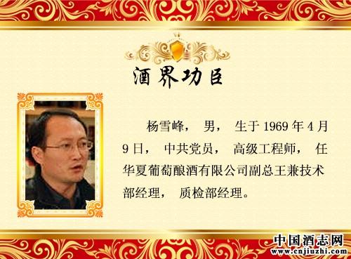 杨雪峰_领军功臣