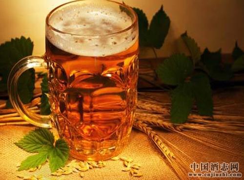 不同类型啤酒的分别能存放多久?