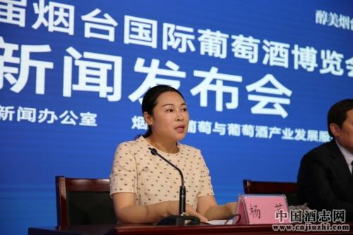 百高文化总经理杨芫女士答记者问