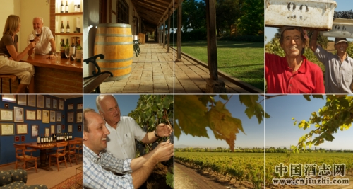 智利葡萄酒的瑰宝――雨果卡萨诺瓦家族